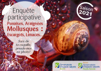 Flyer-mollusque_2021_VF
